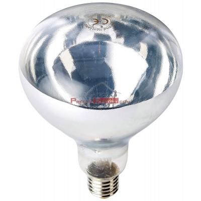 Bombilla calentadora inastillable luz blanca ES-250W