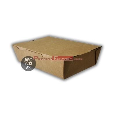 Caja cartón muy grande. CCL004